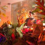 Marvellous island festival by Igor Ribnik day 1-24