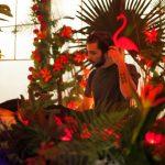 Marvellous island festival by Igor Ribnik day 2-26