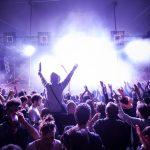 Marvellous island festival by Igor Ribnik day 3-25
