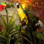 Marvellous island festival by Igor Ribnik day 4-50