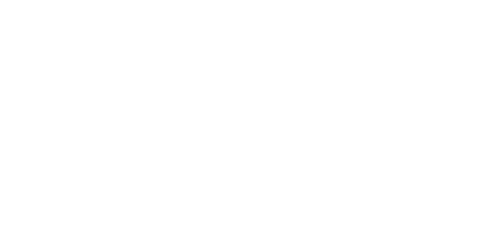 MarvellousIsland_Logo_White_petit